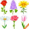 Векторные цветы