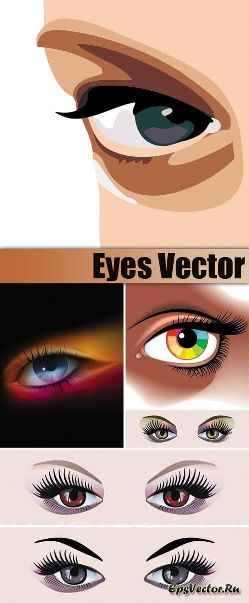Глаза в векторе