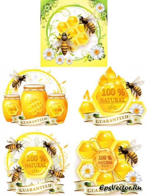 Мед в векторе