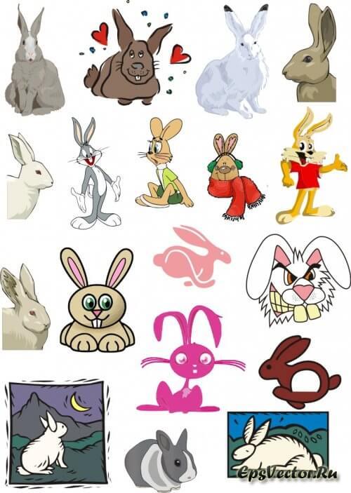 Заяц в векторе