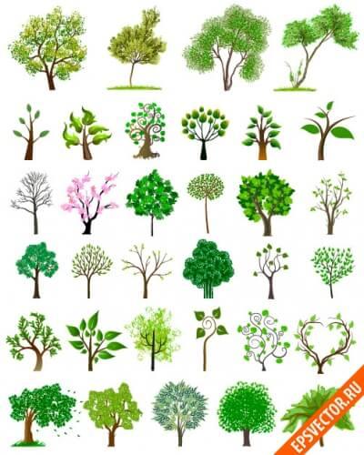 Векторные деревья