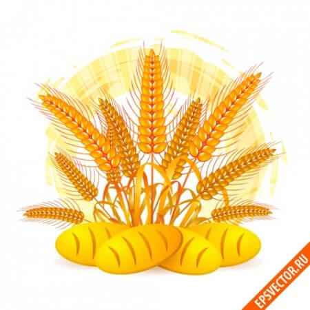 Пшеница в векторе