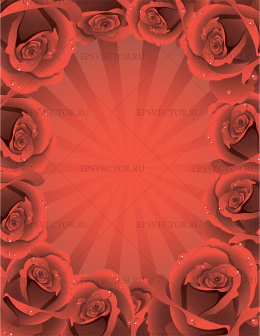Фон с розами