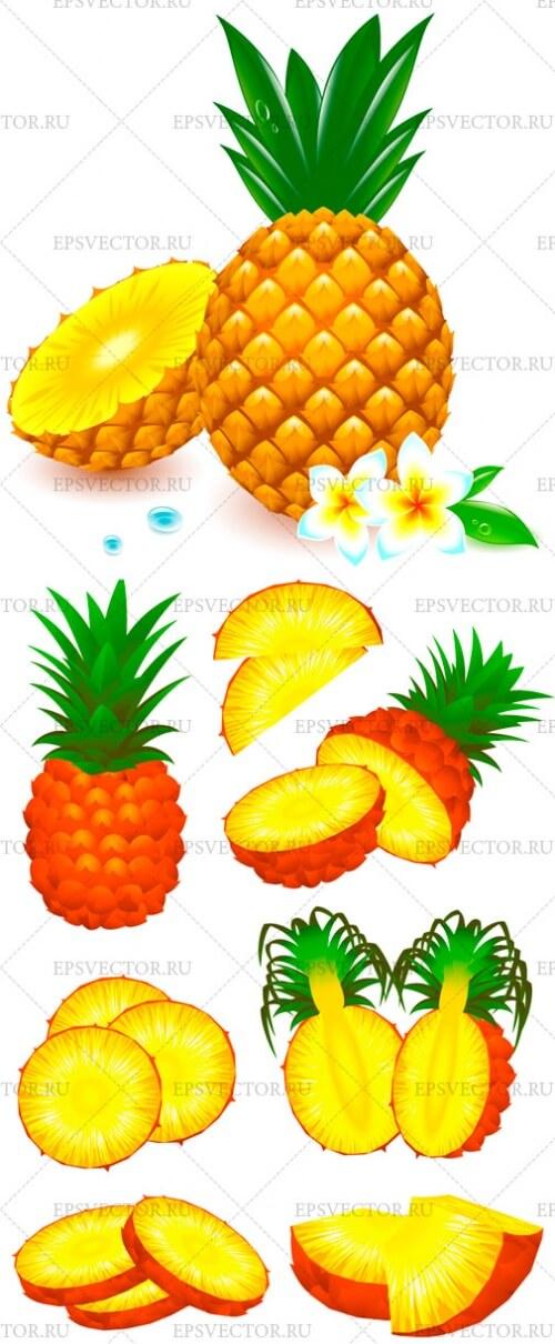 Клипарт ананас в векторе