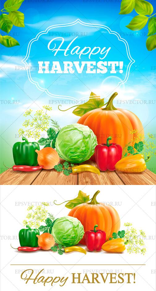 Клипарт урожай